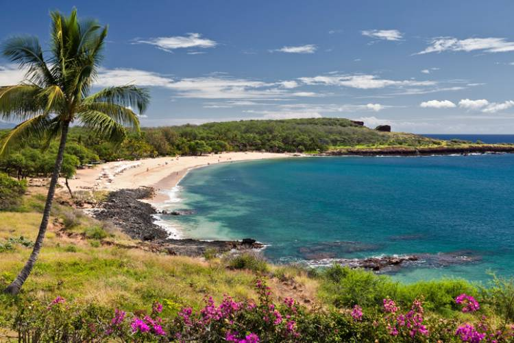 Explore the Island of Lanai | Paradise Activities | Maui Resorts