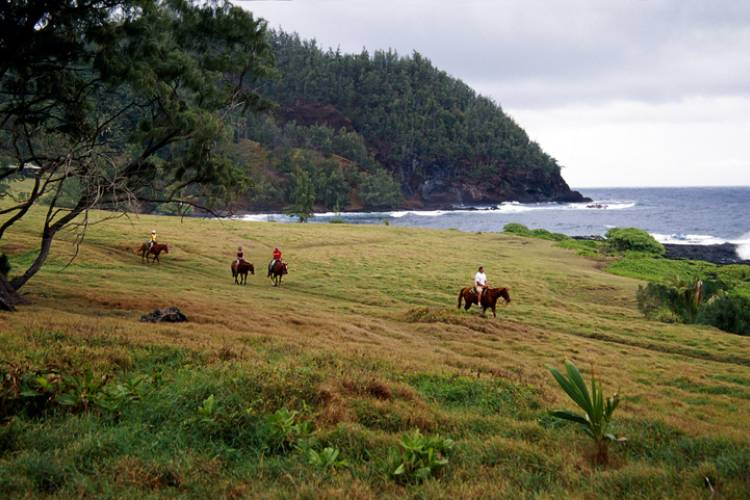 Maui Horseback Riding | Paradise Activities | Maui Resorts