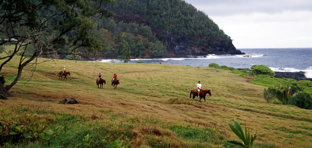 Maui Horseback Riding | Paradise Activities | Maui Resorts