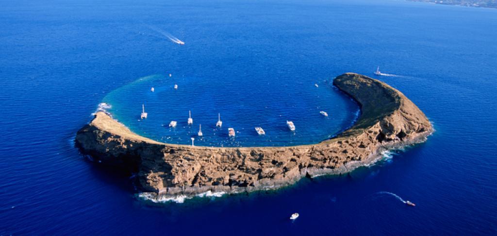 Scuba Dive Lanai & Molokini | Paradise Activities | Maui Resorts